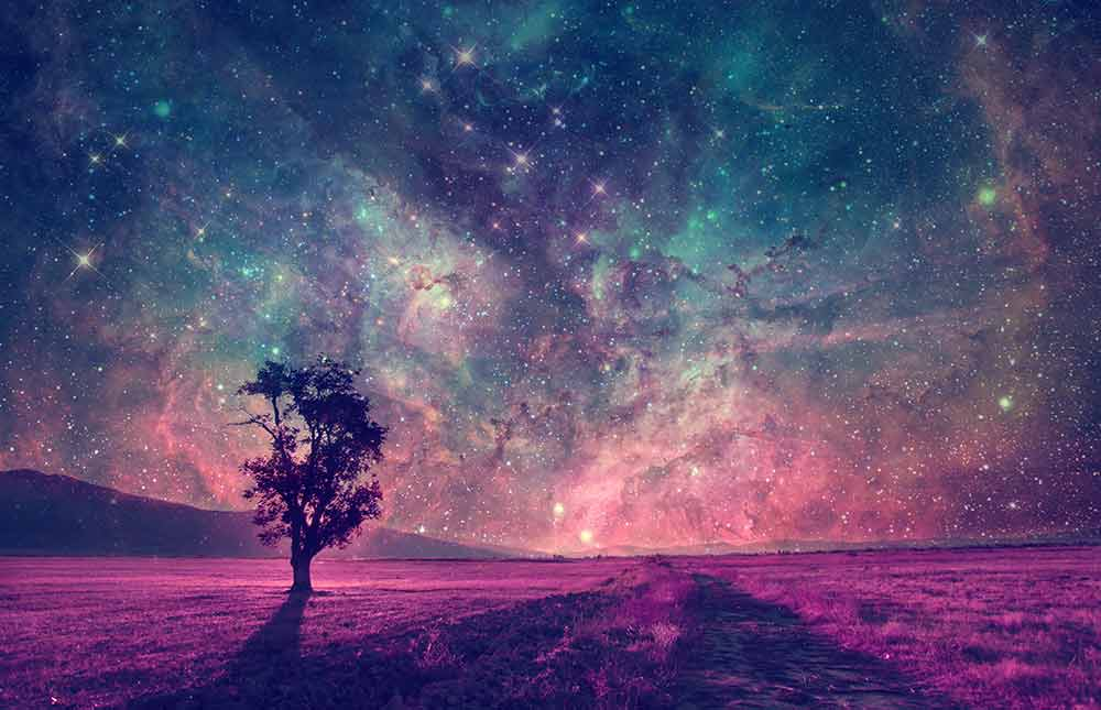 stay-in-lucid-dream